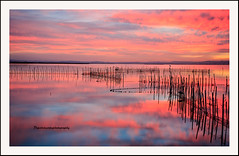 """Glorious sunset at L'Albufera Natural Park I"" (Pepelahuerta) Tags: raw lagos atardeceres lakers reflejos laalbufera leefilters canon5dmarkii ultraangulares pepelahuerta canon1740ef valenciaparquenatural"