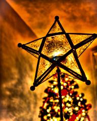 I Wish I May I Wish I Might... (Jack Deem) Tags: christmas light holiday tree make canon wonder star you tea when 7d wish hdr upon photomatix canon7d mygearandme rememberthatmomentlevel1