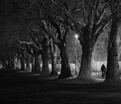 On-Yer-Bike: Spencer Park Earlsdon Coventry West Midlands UK (Kangaroobie......catching up) Tags: uk trees bw mystery perspective nightlight coventry westmidlands fenceline earlsdon spencerpark onyerbike