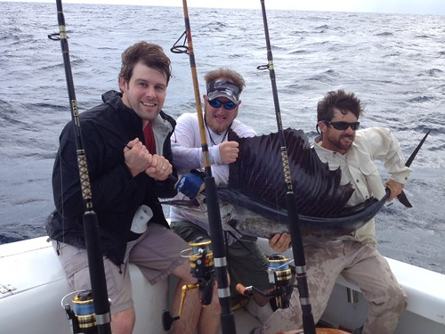 Sailfish Catch in November 2012