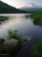 Trillium Tranquility (John Behrends) Tags: lake trillium pentax pentax200d
