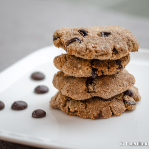 Paleo Dark Chocolate Chip Coconut Cookies (gluten free, sugar free, lactose free)
