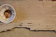Mug One, You again? (Etching Stone) Tags: world mostra two green art cup coffee vegetables make fruit march three movement gallery wasp tea stripes marcia vessel bowl exhibition il cups cardboard di mug target movimento ora grün now gira tre per turns caffè due tomaten starts strips turning galleria vaso alla slender gemüse atelier goblet tazza mondo rotate obst tè darte strisce cartone coppa grünzeug tazze calice destinazione ciotola ruotare rendere svolta snello inizia