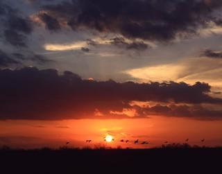 Sundown ~ Quarta Sunset 148