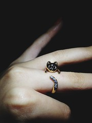 Cat Promise Ring (funkmastav) Tags: love diamonds gold christmaspresent catring promisering