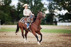 whoa! (Kathy Froilan) Tags: ohio horse man boots parade stop rider trot saddle select gallop stirrups delawarecountyfair unanimous canonef70200mmf28lisusm canoneos5dmarkii thechallengefactory tcfwinner delawareallhorseparade allfourhoovesofftheground