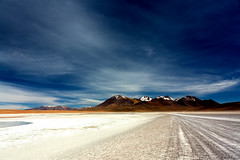 El Camino del Altiplano Boliviano. (Kevin Vsquez) Tags: del de arbol bolivia desierto altiplano uyuni lagunas piedra siloli