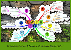 Living Organisations v2 (Lex Photographic) Tags: photoshop movement picasa growth reproduction sustainable sustainability nutrition sensitivity symbiosis excretion respiration imindmap thinkbuzan livingorganisations organisationalecology livingorganisation sevensignsoflife organisationalecologist