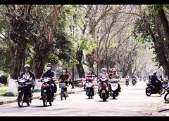 Lê Huân str (Quoc Bao Truong) Tags: nikon vietnam viet hue nam nikonian