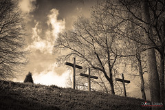 Forgiven (dcimageforge (Danny Collado PixelWorks Photography) Tags: 28 2013 2470 autumn blackandwhite carolina chapel christiantours church clouds cross d800 dannycollado flickr forest grass landscape nikon northcarolina pixel pixelworks sky dcimageforge outdoor outdoors