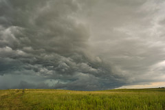 Priaire Wind (thefisch1) Tags: surge wind roll cloud thunderstorm thunder storm sky ominous threat pasture prairie kansas flint hills grass blue stem nikon nikkor d700 interesting turbulence oogle