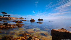 Calming The Sea (scottducey209) Tags: monterey pacificgrove pacificocean montereybay coast sea ocean d5200 nikon haida 30 1000x 10stop longexposure daytimelongexposure smooth water centralcoast norcal northerncalifornia seaside rocks blueskies clouds cypress trees tokina 1116mm wideangle ultrawideangle ultrawide westcoast birds