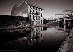 DSC_4304 (jasonmgabriel) Tags: bridge house reflection building water monochrome lines wall train graffiti canal leeds