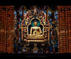Namdroling Monastery (siddharth.bangera) Tags: namdroling monastery india karnataka coorg kodagu monk travel canon 550d t2i 55250mm