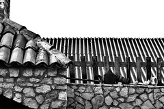 Hedonism (di.diana) Tags: hedonism rustica village tomislavovac pelješac vertical croatia fulloflife