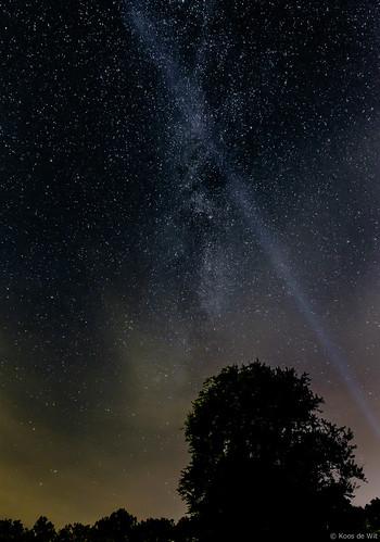 Spotlight on the Milky Way