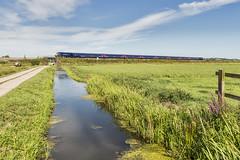 Crossing West Sedge Moor (powern56) Tags: somerset somersetlevels stathe firstgreatwestern class43 hst railway train railstathe