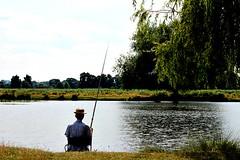 Gone fishin' (Peter Denton) Tags: bushypark royalpark teddington fishing quiet candid fisherman pond tranquil tranquillity peterdenton middlesex londonboroughofrichmond westlondon legofmuttonpond maninhat leisure pastime retired england uk eu europe canoneos100d tree