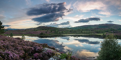 Reflection Perfection (Highlandscape) Tags: em5 landscape sunset reflection outdoor rural hill rocks countryside highland moor cloud heather places rock olympus natural midges water beauty hills colour loch trees summer scotland flowersplants sky features ecosse ba ruaidhe httphighlandscapezenfoliocom lochnabaruaidhe olympusem5markii