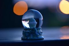 Cupcake (azyef94) Tags: night nightphotography makro macro macrophotography makrofotografie bokeh bokehphotography nikonflickraward noedit 2side dunkelhell