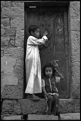 DSC_7490 (Sgaffo) Tags: yemen travelling 20072008 socotra