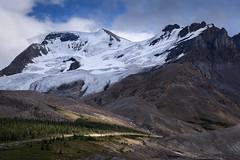 Columbia Icefields, Banff National Park, Alberta, Canada (diana_robinson) Tags: banff canada columbiaicefields icefieldsparkway glacier alberta lateafternoonsun snow mountain banffnationalpark