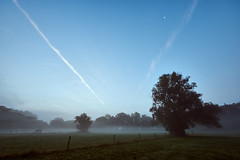 morning stroll (Marcel Andr Briefs) Tags: landschaft landscape willingshausen morning blue fog nebel blau morgens sunrise sonnenaufgang blauestunde bluehour countryside lndlich bluesky blauerhimmel sonyilca77ii hessen deutschland de outdoor wideangel ultrawideangle uww uwa sky himmel