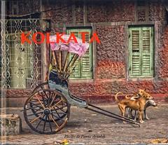 LE LIVRE DE MES PHOTOS DE KOLKATA (pierre.arnoldi) Tags: inde kolkata bengaldelouest photosderue blurb photos originales