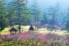 Jin_a06195 (Chen Liang Dao  hyperphoto) Tags:                vacation
