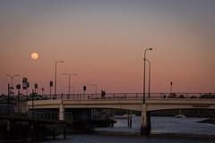 Hi moon, bye sun. 260/366 (jenniferdudley) Tags: dusk mynikonlife nikonaustralia nikond750 nikon lightroom waterway creek architecture australia brisbaneaustralia brisbane breakfastcreek bridge moon moonrise sunsets sunset 16sep16 day260366 366the2016edition 3662016