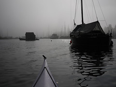 Foggy day marina (Pivi ) Tags: sea fjord marina kayak paddling fog oslo norway