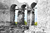 The present through the past. (CyberDEL1) Tags: samsungnx1 samsungnx1650228s macedoniatimeless macedonia macedoniagreece greece hellas prespes agiosachillios ελλάδα μακεδονία άγιοσαχίλλειοσ πρέσπεσ