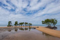 God Invented 4WD's (Maikel van Schaik) Tags: off road darwin australia australi mangrove beach secluded belyuen mirror reflection nikon d600 travel nikon173528 sand crocodilesafety