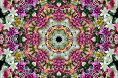 Phosphene (Cristina Burns) Tags: cristinaburns surrealism contemporaryart mandala foodart flowerdesign fooddesign design interiordesign photoshop stilllife fineart foodphotography