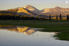 Yosemite National Park (Desert Rat Photography (E.A. Rosen)) Tags: yosemite yosemitenationalpark yosemitevalley