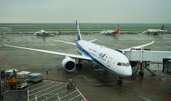 Boeing 787-8 Dreamliner, All Nippon Airways, JA874A (carlcowkau Photography) Tags: carltang carlcowkauphotography pvg shanghai pudong boeing boeing787 7878 dreamliner ja874a nh972 hnd tokyo haneda ana allnipponairways gatephoto