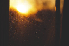 Beginning (Christian Watson Photography) Tags: light sunset sun sunlight nature sunshine silhouette yellow sunrise canon gold golden focus bokeh adobe 7d dust tones 135mm lightroom filmlook adobelightroom bokehwhore canon7d