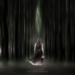 the forest (Ticino-Joana) Tags: wood trees woman tree abandoned water girl mystery female forest dark walking person shoe back scary woods shoes alone dress walk eerie creepy frombehind swamp mysterious bleak lonely frock marsh gown moor anonymous desolate thriller garment shoeless unshod