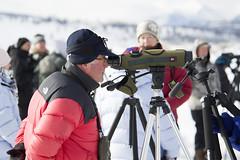 scoping018 (Deby Dixon) Tags: travel nature landscape photography nationalpark wolf wildlife moose fox yellowstonenationalpark wyoming bison wyo bullelk debydixonphotography
