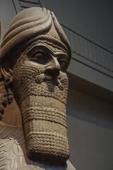 Assyrian Winged Lion Head (christopher_brown) Tags: uk greatbritain travel england sculpture london stone unitedkingdom thebritishmuseum assyria assyrian wingedlion room6 wc1b3dg