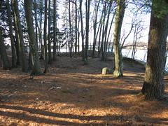 Site du Barrage hemming  l'automne (clementlambert67) Tags: sentier automne arbre boisé rivière river barrage bois drummondville centreduquébec nature environnement forêt feuille barragehemming