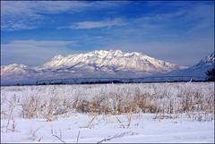 Happy New Year (Utah Mountain Mike) Tags: winter sky snow clouds landscape utah scenery snowcapped fields happynewyear pentaxk20d mttimpangos utahmountainmike