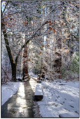 The Path.... (scrapping61) Tags: california winter snow feast woods expression yosemitenationalpark legacy magiceye vangogh 2012 tistheseason masterclass swp rockpaper forgottentreasures artdigital musicphoto momentsofdreams scrapping61 sharingart awardtree covertpainters internationalphoto daarklands trolledproud trollieexcellence daarklandsexcellence artnetcontemporary exoticimage theahwanee pinnaclephotography digitalartscene admintalk imageexcellence greenescene