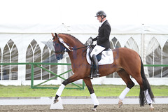 IMG_0786 (RPG PHOTOGRAPHY) Tags: final awards hickstead 5y 200712