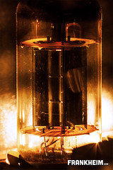 017 Tube (Frank Heim) Tags: light hot macro licht warm glow tube amp makro heis verstrker glhen rhre