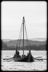 The Vikings are coming (Normann Photography) Tags: tønsberg vikingskip viking vikingship ship rowing vestfold tonsberg normannphotography vikings vessel fartøy båt ancientknowledge visitnorway travel oldesttowninnorway