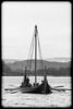 The Vikings are coming (Normann Photography) Tags: ship rowing viking vikingship tønsberg vestfold tonsberg vikingskip normannphotography
