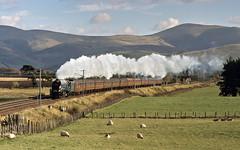Interloper on WCML (goremirebob) Tags: scotland trains steam a4 railways lanarkshire lner westcoastmainline wcml steamexcursion
