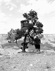 Dad in High Contrast (ShaneJMrozek) Tags: grand canyon national park painted desert petrified forest neopan acros d76 gs645s bw film mediumformat 120
