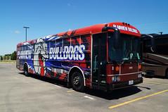 Plainview Bulldogs Thomas Saf-T-Liner HDX #3 (sj3mark) Tags: plainview bulldogs plainviewisd thomasbuiltbuses saftlinerhdx activitybus buswrap